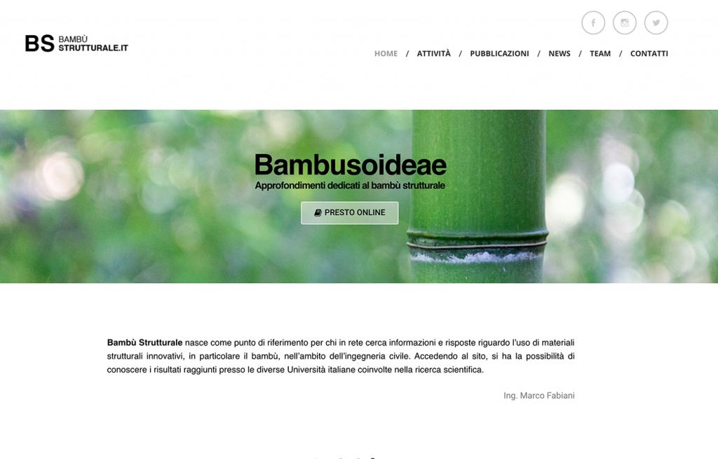 Sito web bambustrutturale