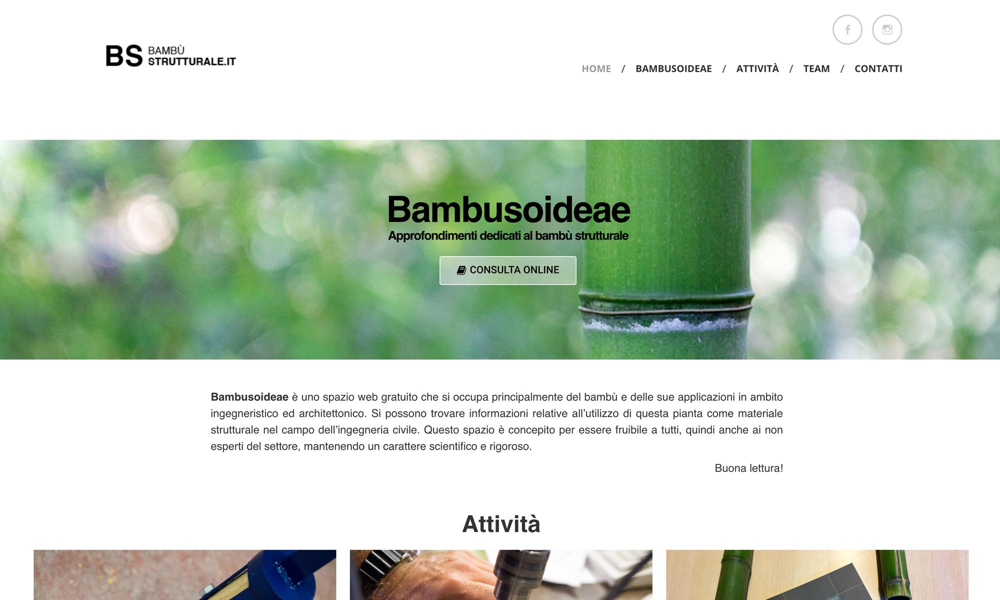Web site design Bambù Strutturale