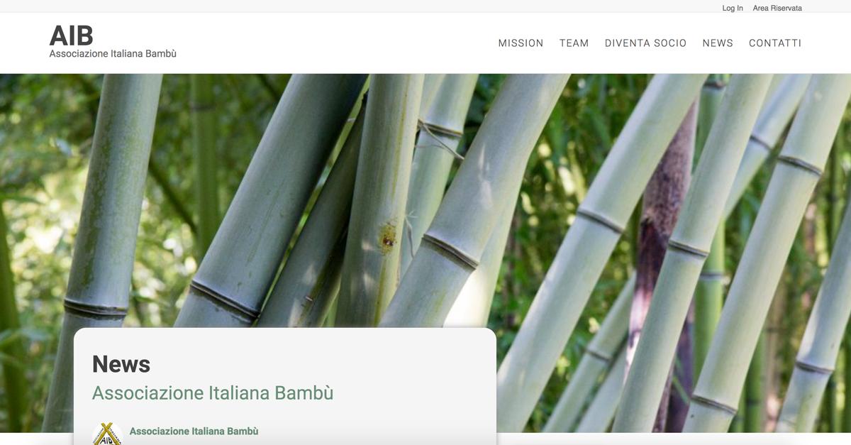 Creazione sito web associazione italiana bambù